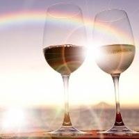 15th Annual Wine Tasting