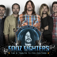 F00Z FIGHTERS - Concerts in the Park