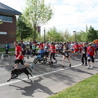 OSU CCVM Pet Day 5K Fun Run