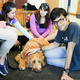 Bark Buddies at Earth Sciences & Map Library