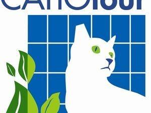 Sixth Annual Catio Tour