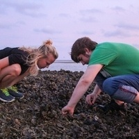 Evening At The Edge of The Sea -Workshop w/ Dr. Heidi Geisz