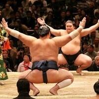 Pre-Season Sumo 101: Who's in the Ring?