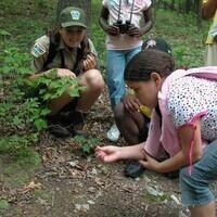 DiscoverE Summer Camp: Penn's Adventurers