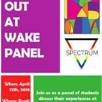 Out at Wake Panel