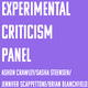 Panel on Experimental Criticism