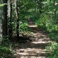 McCune Trail Hike