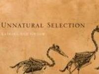 Science On Tap - Unnatural Selection: Animal Evolution at the Hand of Man