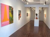 Senior Exhibitions at Satellite Gallery