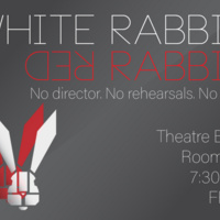 White Rabbit Red Rabbit by Nassim Soleimanpour