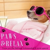 PAWS & Relax Stress Buster