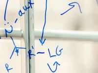 "Radhika Anaredy - ""Study of ionic liquid behavior at solid-liquid interface"""