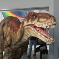 Dakota & Friends Dino Party - Elk Valley Branch Library