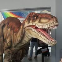 Dakota & Friends Dino Party - St. Albans Branch Library