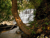 Gorge and Waterfall Photography