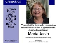 """MBG Friday Seminar with Maria Jasin """"Protecting the genome by homologous recombination: tumor suppression and genome transmission"""""""