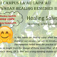 CUH Campus La'au Lapa'au Workshop: Healing Salves