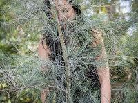 Laurie Lambrecht: Jungle Road Photo Exhibition