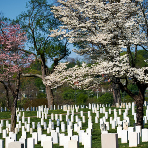 A Place of Honor and Memory: Knoxville National Cemetery and Veterans' Legacy
