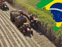 Agrarian Politics and the 2016 Rousseff/Temer Coup in Brazil, by Sérgio Sauer, LASP Seminar Series