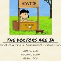 Excel, Qualtrics & Assessment Consultations