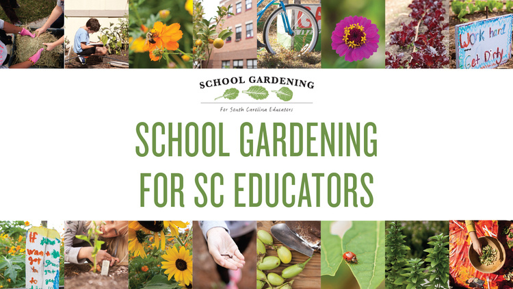 School Gardening for SC Educators Summer Workshop Series