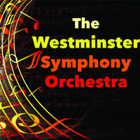 The Westminster Symphony Orchestra