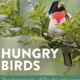 New Exhibit Explores the Eating Habits of Birds