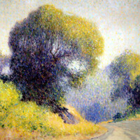 Harmony of Light - Spring in California
