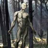Two Hundred Years of Frankenstein
