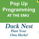 Pop-up Activity at the EMU with the Duck Nest!