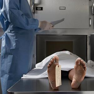 Lunch Break Science: Whole Body Donation
