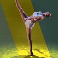 Valencia Dance Summer Repertory Concert