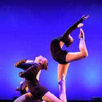 Celebration of Dance at UMM!
