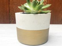 Concrete Planter Class