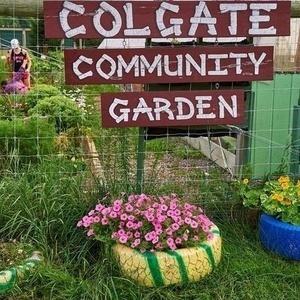 Colgate Community Garden Summer Volunteer Work Party