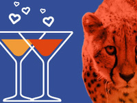 Happy Hour: Party For Cats and Dogs