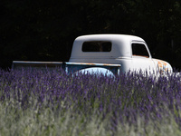 Lavender + Vintage Marketplace