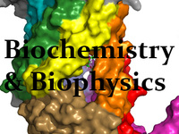 Biochemistry and Biophysics Fall Seminar Series