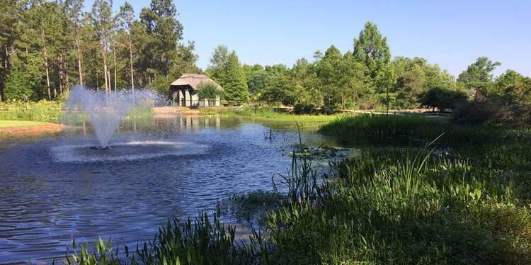 Fish Pond Management Workshop