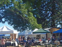 Art & Wine Fair