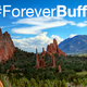 Join the Colorado Springs Forever Buffs Leadership Team