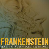 Frankenstein: Penetrating the Secrets of Nature
