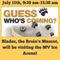 Free Skate with Boston Bruins' Mascot