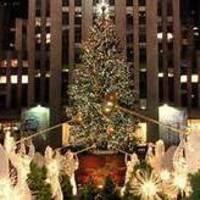 Rhody Adventures - New York City Day Trip