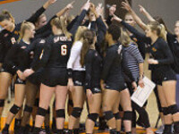 Bearkat Volleyball vs McNeese