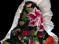 Alia Ali: Borderland Artist Talk