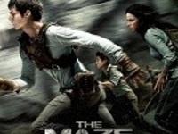 Teen Movie Night: Maze Runner