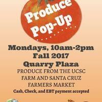 Organic Produce Pop Up