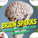 FAU Brain Institute: Brain Sparks!
